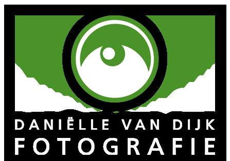 logo-danielle-van-dijk-home